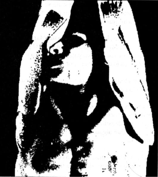 Gabriela González Reyes, Opción 55, 1992.